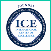 International Center of Excellence
