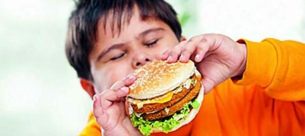 obesity in indian children